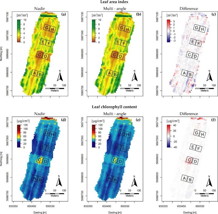 Improved estimation of leaf area index and leaf chlorophyll