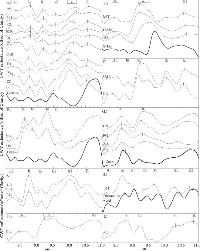Classification Of Tree Species Based On Longwave Hyperspectral Data