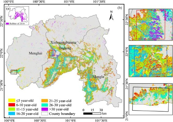 An updated delineation of stand ages of deciduous rubber plantations
