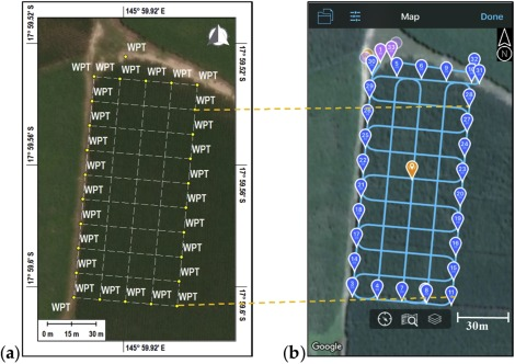 Monitoring sugarcane growth response to varying nitrogen