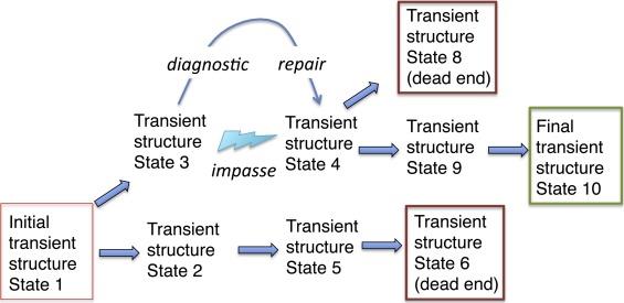 The evolutionary dynamics of language - ScienceDirect
