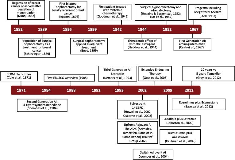 Cancer endocrine therapies - Trasmissione del papilloma