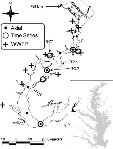 Modeling the pH in the tidal fresh Potomac River under conditions of