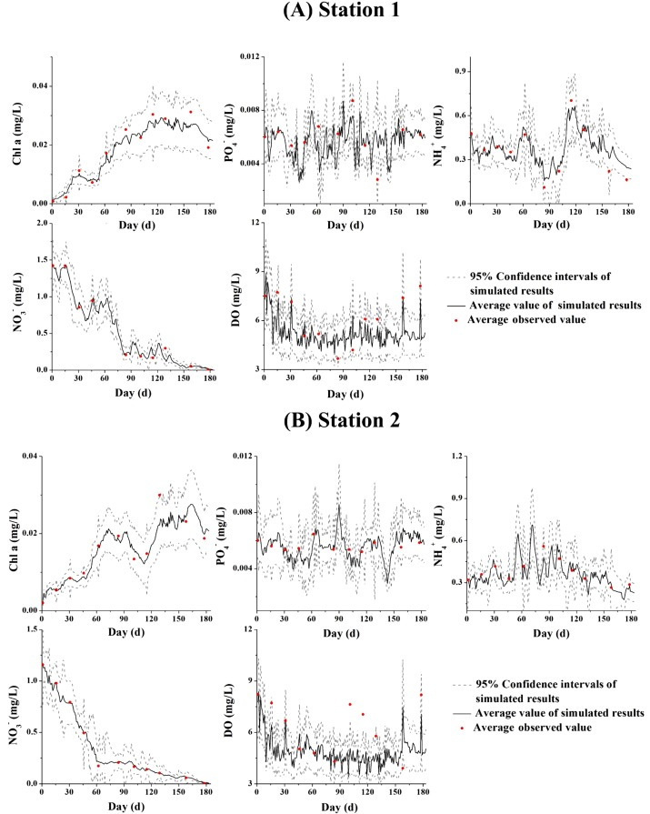 Development Of A Two Dimensional Eutrophication Model In An Urban