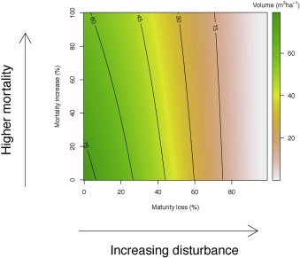 Assessing timber volume recovery after disturbance in tropical