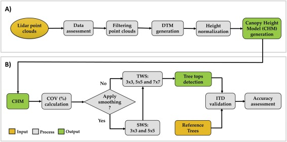 Optimizing individual tree detection accuracy and measuring forest