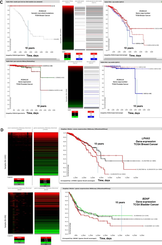 Activation of endogenous human stem cell-ociated retroviruses ... on