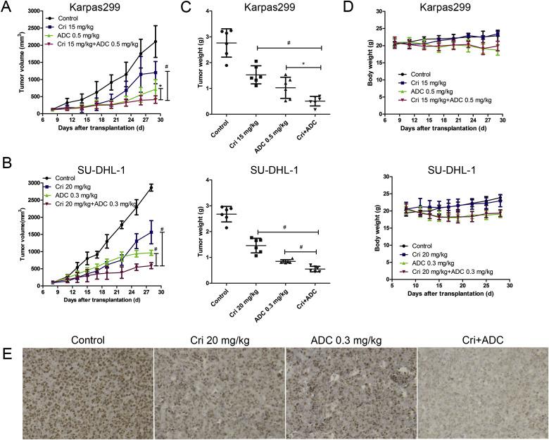 Crizotinib enhances anti-CD30-LDM induced antitumor efficacy