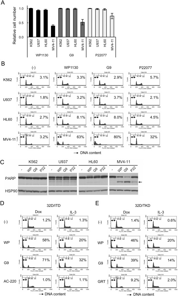Inhibition of USP9X induces apoptosis in FLT3-ITD-positive AML cells