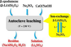 Extraction of lithium from β-spodumene using sodium sulfate