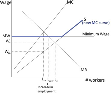 Heterogeneous effects of imperfectly enforced minimum wages