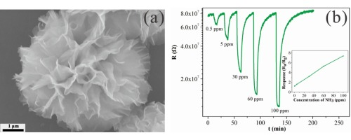 Ultra-sensitive NH3 sensor based on flower-shaped SnS2