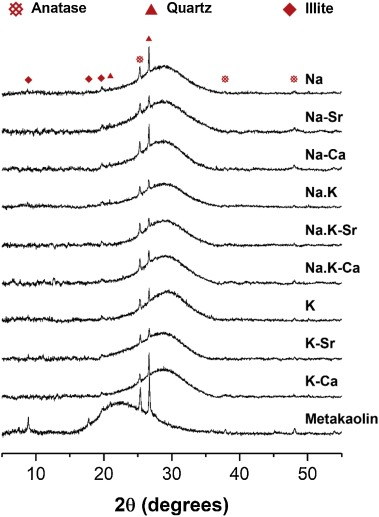 Incorporation of strontium and calcium in geopolymer gels