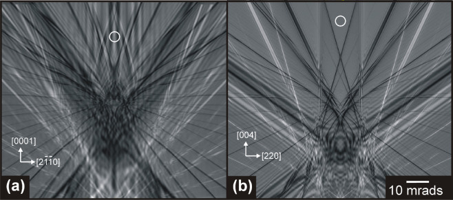 Direct comparison of off-axis holography and differential