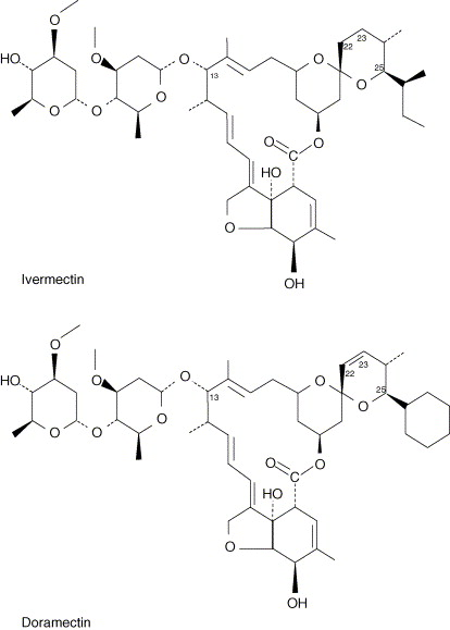 Comparative plasma dispositions of ivermectin and doramectin