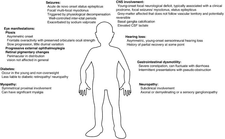 adults in Mitochondrial myopathy