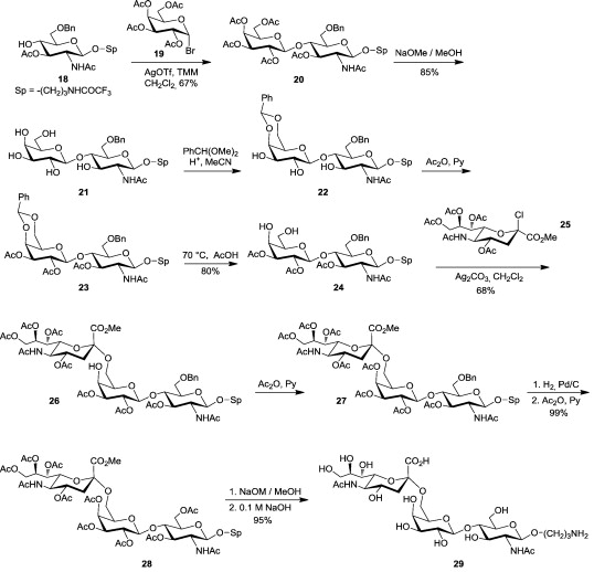 A guide into glycosciences: How chemistry, biochemistry and biology