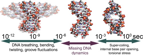 Convergence and reproducibility in molecular dynamics