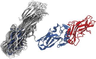 Enhanced sampling techniques in molecular dynamics simulations of