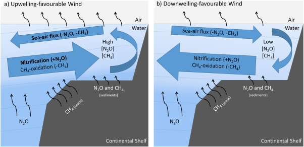 Factors controlling methane and nitrous oxide variability in the schematic diagram showing ch4 and n2o sources sinks and physical transport ccuart Choice Image