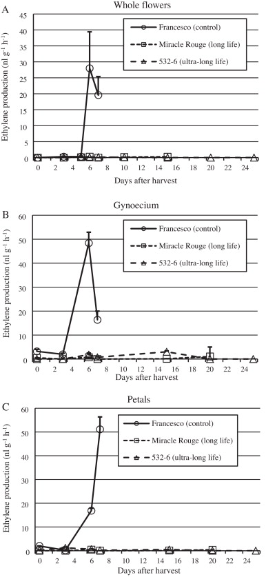 Expression levels of ethylene biosynthetic genes and senescence