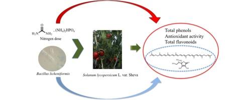 Effect of nitrogen fertilization and Bacillus licheniformis