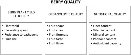 Pre-harvest factors influencing the quality of berries