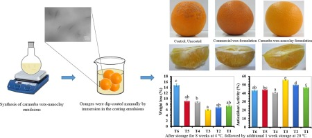 Performance of carnauba wax-nanoclay emulsion coatings on
