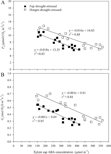Impact of drought stress on photosynthetic response, leaf water