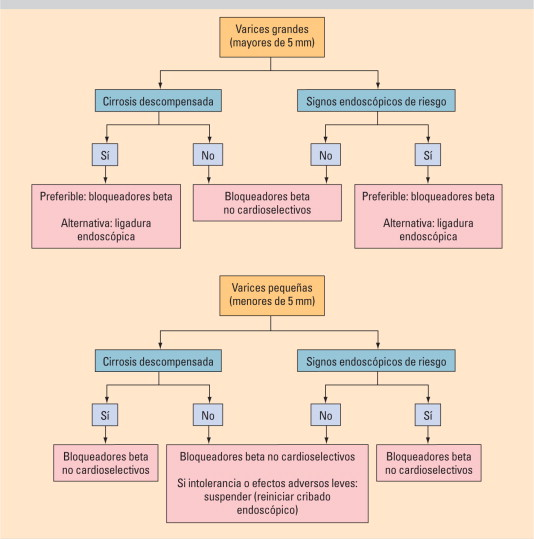 Mecanismo de bloqueador beta portal de hipertensión pronóstico