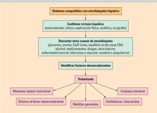 Grados De Encefalopatia Hepatica Pdf Download