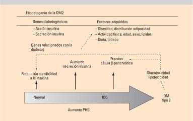 estudio de caso de diabetes tipo 2 recién diagnosticado con tipo