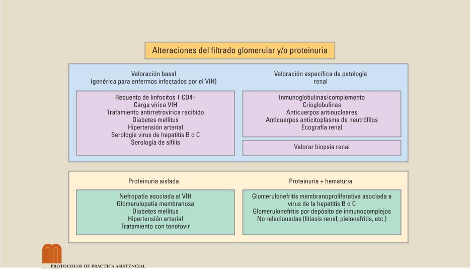 hipertensión diabetes nefropatía