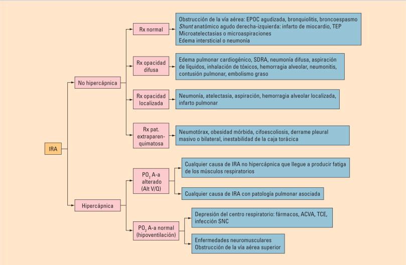 Soporte ventilatorio emedicina hipertensión