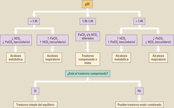 Acidosis Y Alcalosis Metabolica Pdf Download