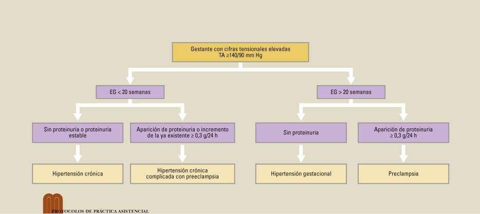 Tratamiento de hipertensión en el embarazo