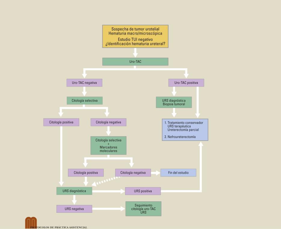 marcadores de cáncer de próstata 971