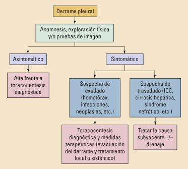 manejo dietético del quilotórax de la diabetes