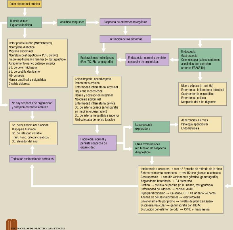 inflamación intestinal y dolor pélvico