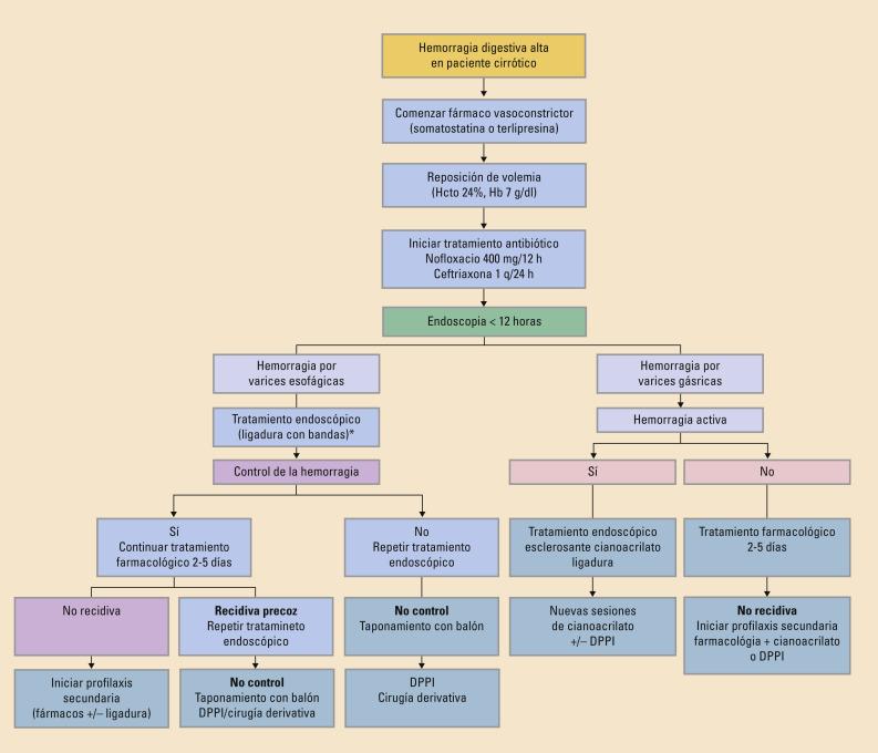 Varices esofágicas náuseas