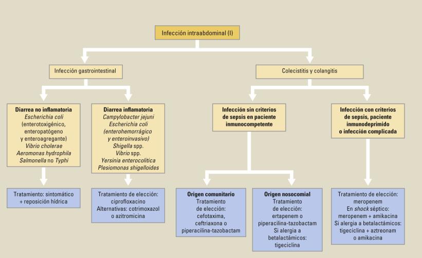 tratamiento de infección de piel con chaetomium