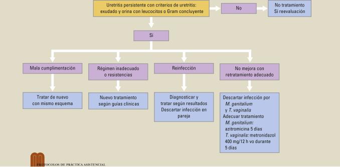 diagnóstico y tratamiento de uretritis