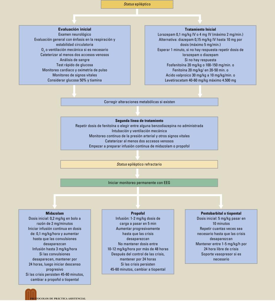 Protocolo De Manejo Clínico Del Status Epiléptico Sciencedirect