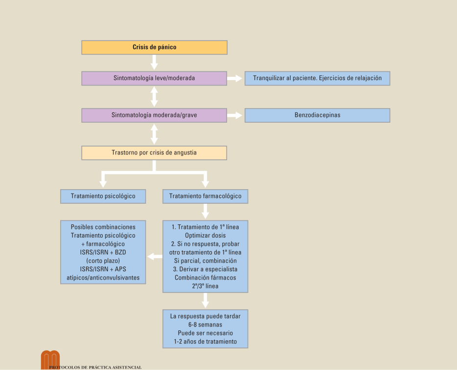 Protocolo Diagnóstico Y Terapéutico Del Trastorno Por Crisis De Ansiedad Sciencedirect