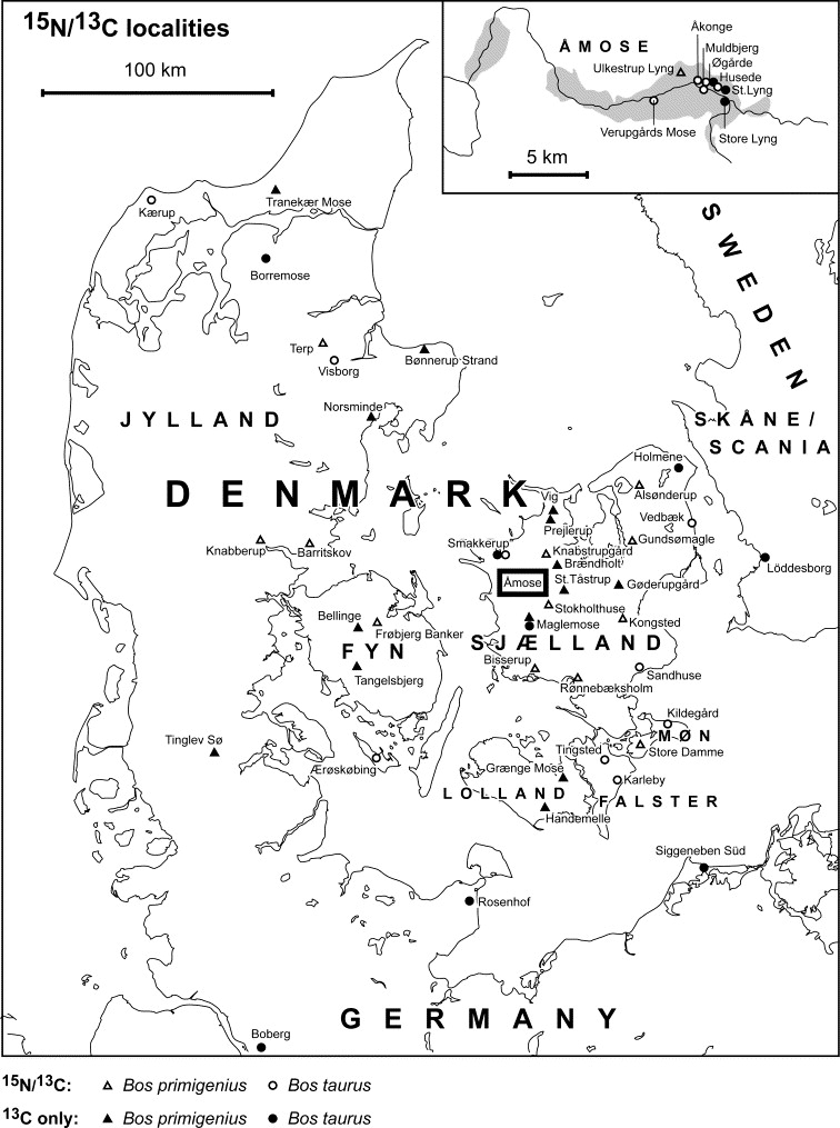 Diet Of Aurochs And Early Cattle In Southern Scandinavia Evidence