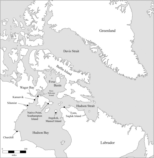 Radiocarbon dating fisk bone