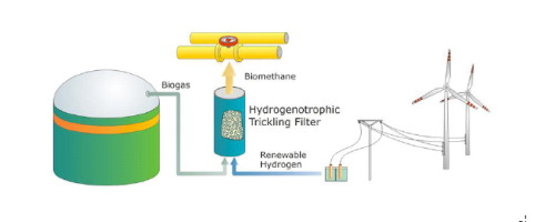 Biological biogas upgrading capacity of a hydrogenotrophic community in a  trickle-bed reactor - ScienceDirect
