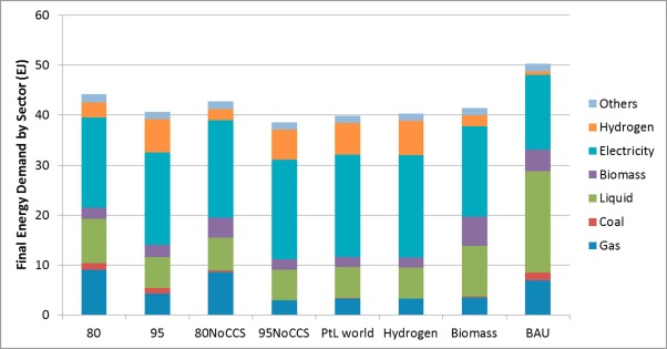 Potential for hydrogen and Power-to-Liquid in a low-carbon