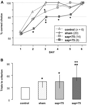 Extensive Immunolesions Of Basal Forebrain Cholinergic System Impair Offspring Recognition In Sheep Sciencedirect
