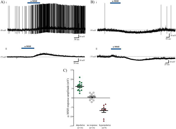 α-MSH exerts direct postsynaptic excitatory effects on NTS
